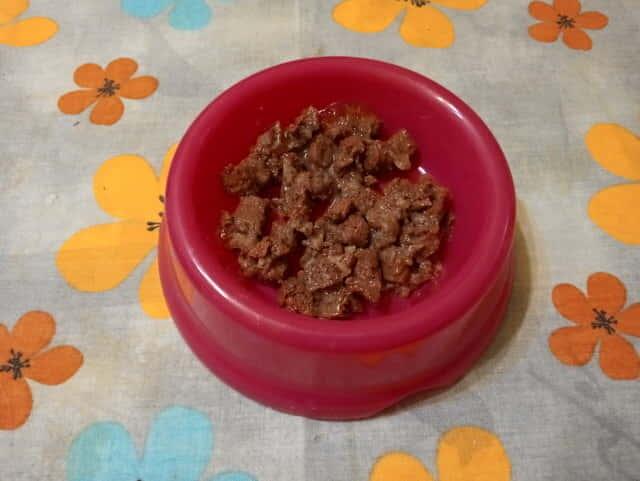 Bozita-macskaeledel