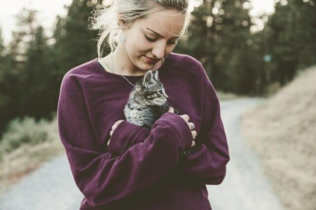 macska-béres-csepp-vélemények-