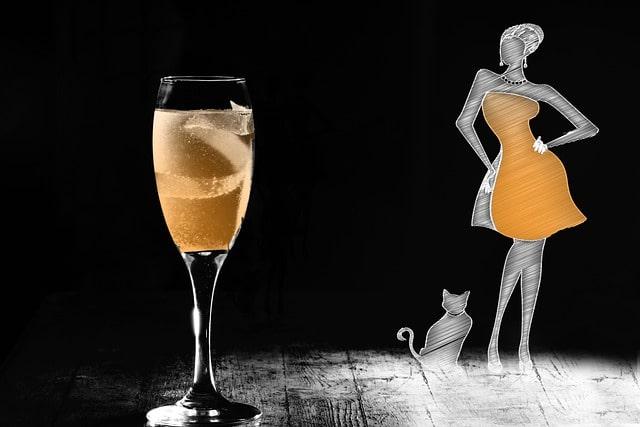 szilveszter-macskával
